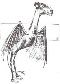Jersey_Devil_Philadelphia_Post_1909